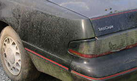 Common Hazards For Your Car 39 S Paint Kaady Car Washes